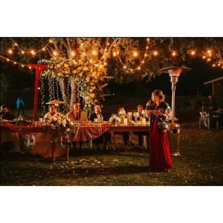 This oak tree, the lights, the florals... True love... 😍😍😍😍😍😍😍😍😍😍😍😍😍😍 #dream #love #wow @whisperingwindscamp #speeches #weddingpics #oaktree #outdoorwedding #socalphotographer #socalwedding #littlethingstheory #edisonlights