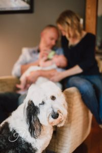 newborn family photography boise idaho