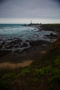 Pigeon Point lighthouse california coastline Los Angeles headshot photographer